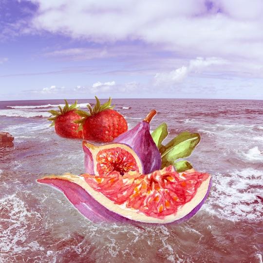 Strawberry Fig